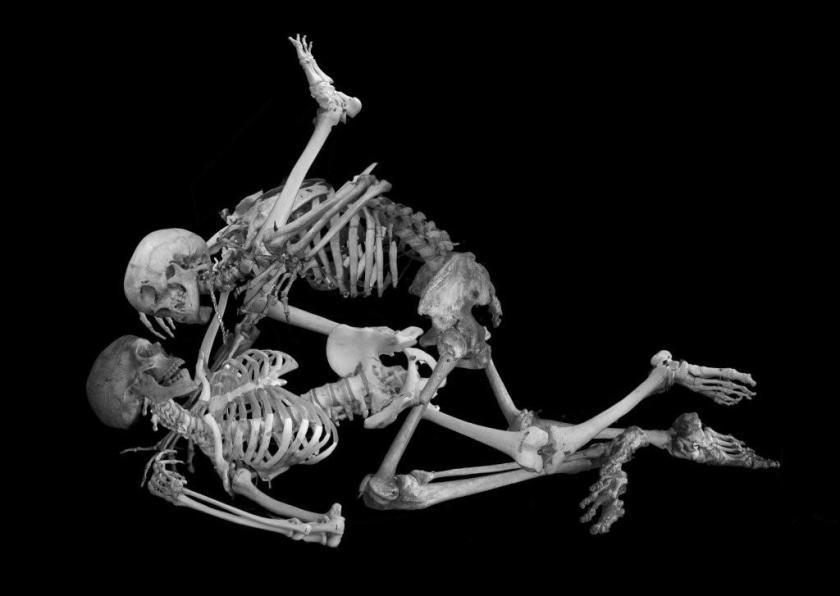 Skeleton Dildo